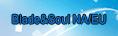 Blade&Soul NA/EU RMT